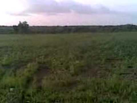 AA Farm Video, Saki Oyo State