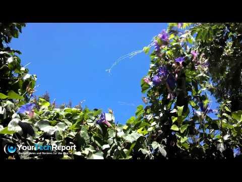 Camera Test: Video From the Motorola Droid RAZR MAXX