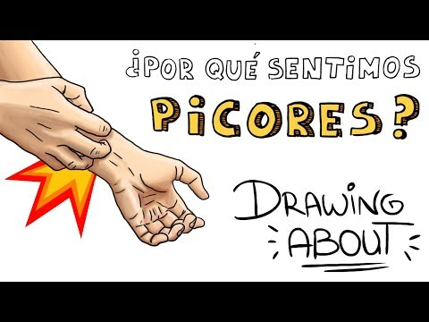 Download Youtube: ¿POR QUÉ SENTIMOS PICOR?   Drawing About con @GlóbuloAzul