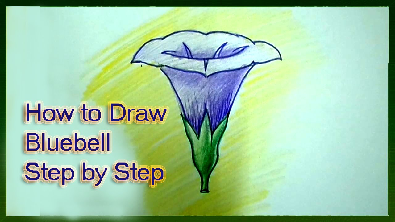 how to draw bluebell flower step by step youtube