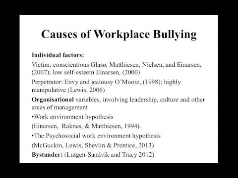 'From the School Yard to the Staff Room' - exploring the bullying phenomenon