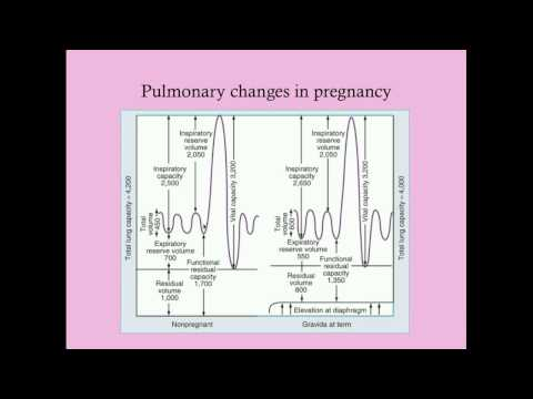 Basic Physiology of Pregnancy - CRASH! Medical Review Series