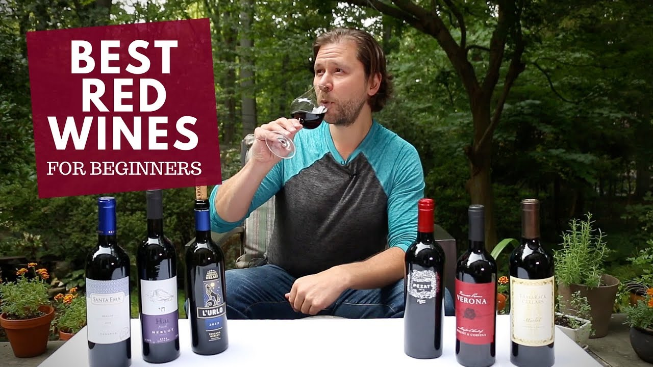 The Best Red Wines For Beginners Series 3 Merlot - Youtube-9827