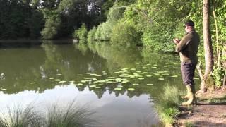 Fliegenfischen auf Karpfen - ein Abenteuer mit großen Fischen