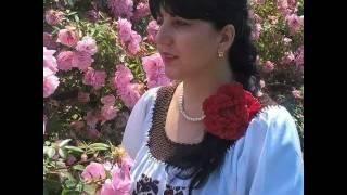 Formatia Trandafir si Daniela Bacaoanu - Firicel de iasomie