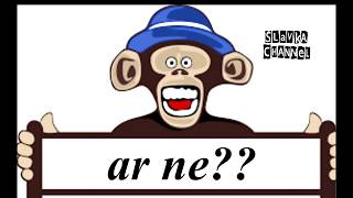 beždžionių svorio metimas)