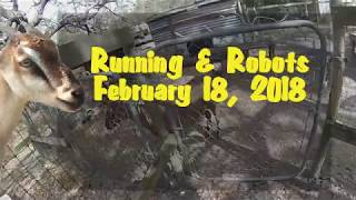 Running & Robots - February 18, 2018