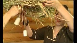 Фазенда на Первом с участием Нашего Кедра от 18.12.2011