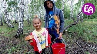 Собираем грибы в лесу. Отличная грибалка