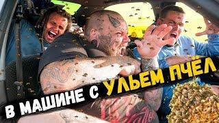 Закрылись в машине С УЛЬЕМ ПЧЕЛ | ОПАСНЫЙ ЭКСПЕРИМЕНТ