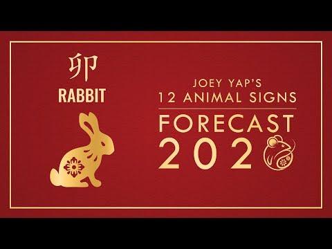 2020 Animal Signs Forecast: RABBIT [Joey Yap]
