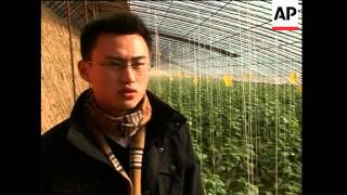Increasing demand for organic food in China