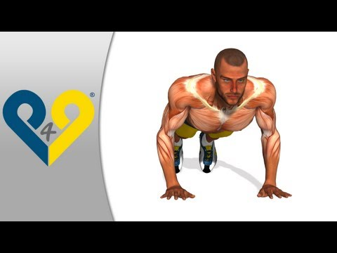 Como fazer flexoes, exercicios flexões para peitoral, flexoes de braço - mãos amplitude tórax
