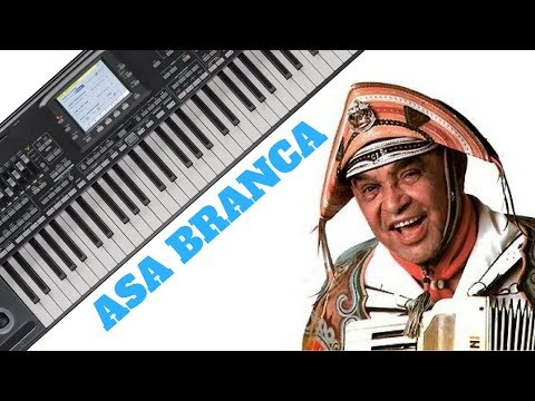 Asa Branca no Teclado Para Iniciantes(AULA COMPLETA)-Ricardo Brito