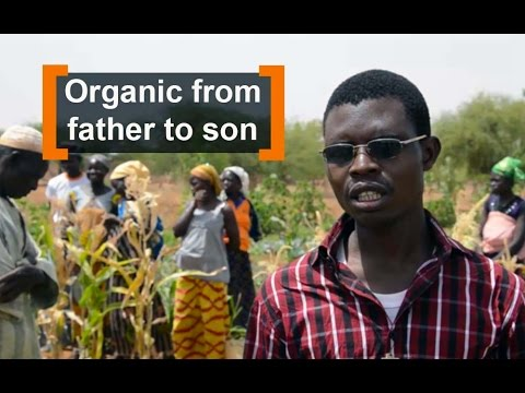 Burkina Faso: Organic from father to son