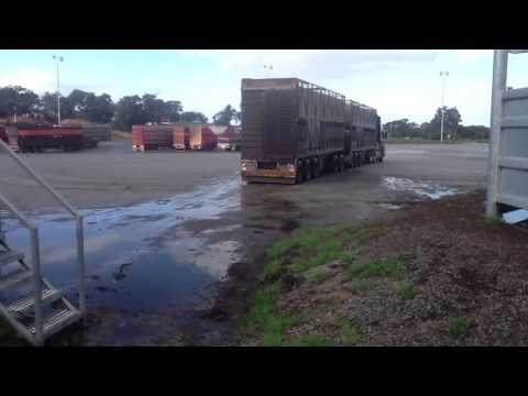 Reversing a Scania ROAD TRAIN