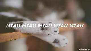 xiao pan pan & xiao feng feng - learn to meow 【sub español】