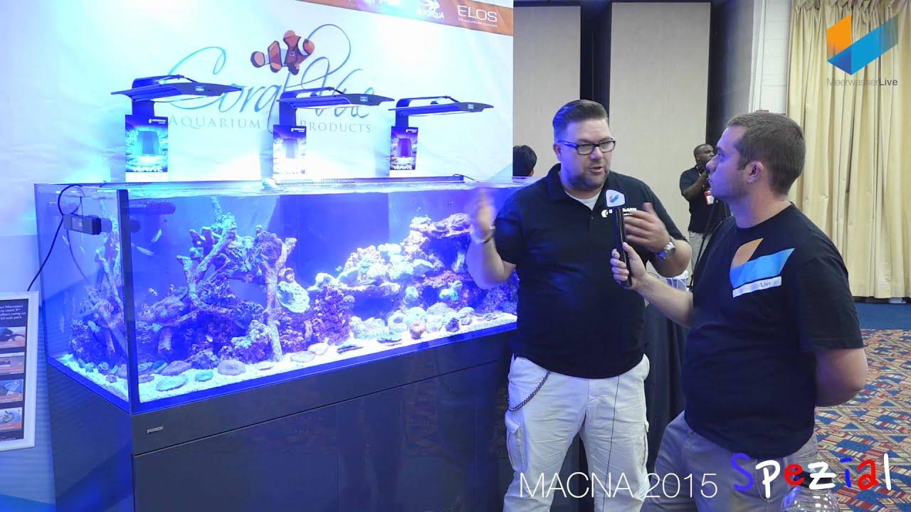 Giesemann VerVve LED | MACNA 2015 | Meerwasser Live TV - YouTube