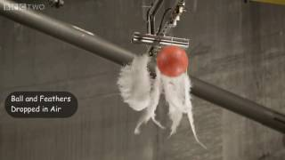 Bowling Ball and Feathers Dropped in Air and then Vacuum