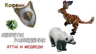 [ArcheAge] Разведение Ятт и Медведей (подробно)(, 2014-05-25T13:11:25.000Z)