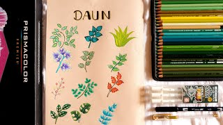 MARI MENGGAMBAR 12 BENTUK DAUN (DRAWING LEAVES)