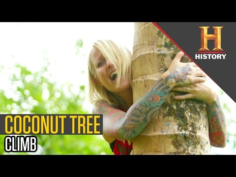 Climbing For Coconut Sap | Ride N' Seek: Philippines with Jaime Dempsey
