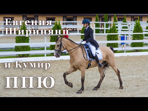 Евгения Ширинянц и Кумир. Конный спорт. Выездка. ППЮ - 62.222%
