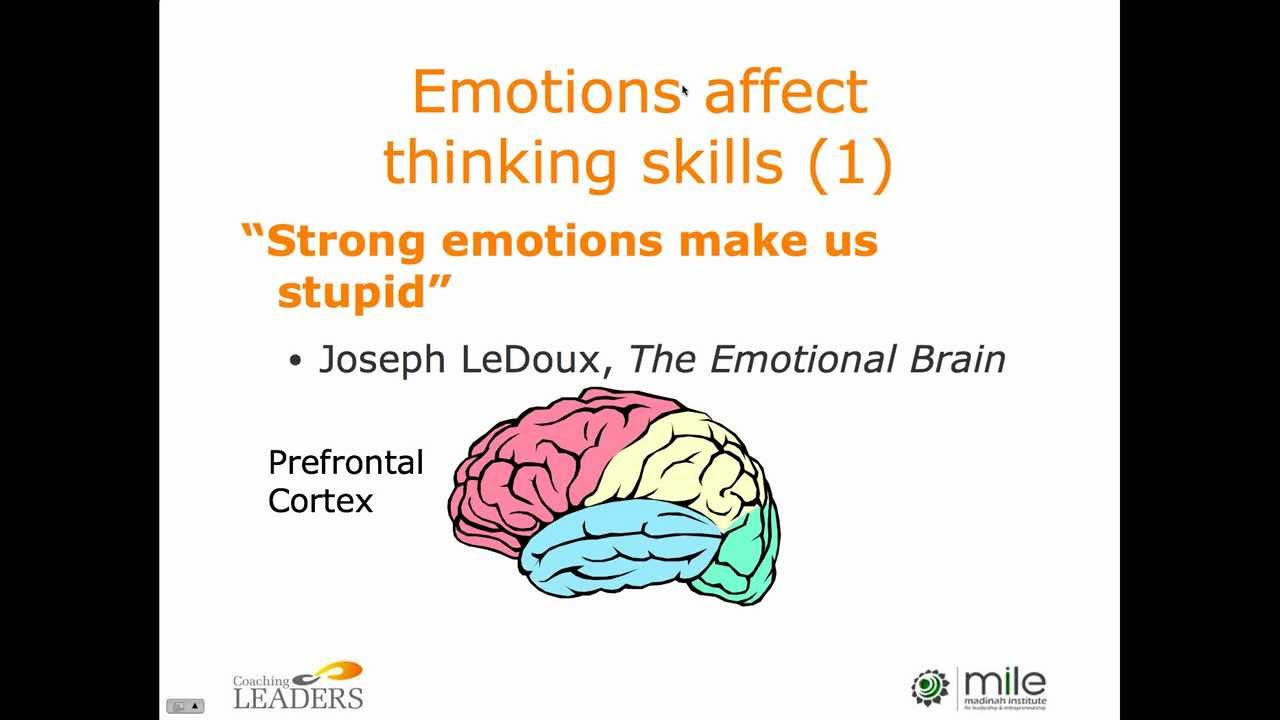 Leading With Emotional Intelligence by Andy Smith of Coaching Leaders -  MILE Leadership Development