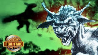 THE JERSEY DEVIL - real or fake?