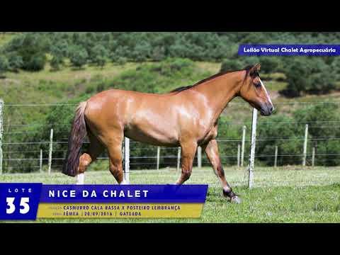 LOTE 35 - Nice da Chalet