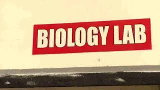 LSS NATIONAL PUBLIC SCHOOL INSPECTION VIDEO 15 FEB 2018