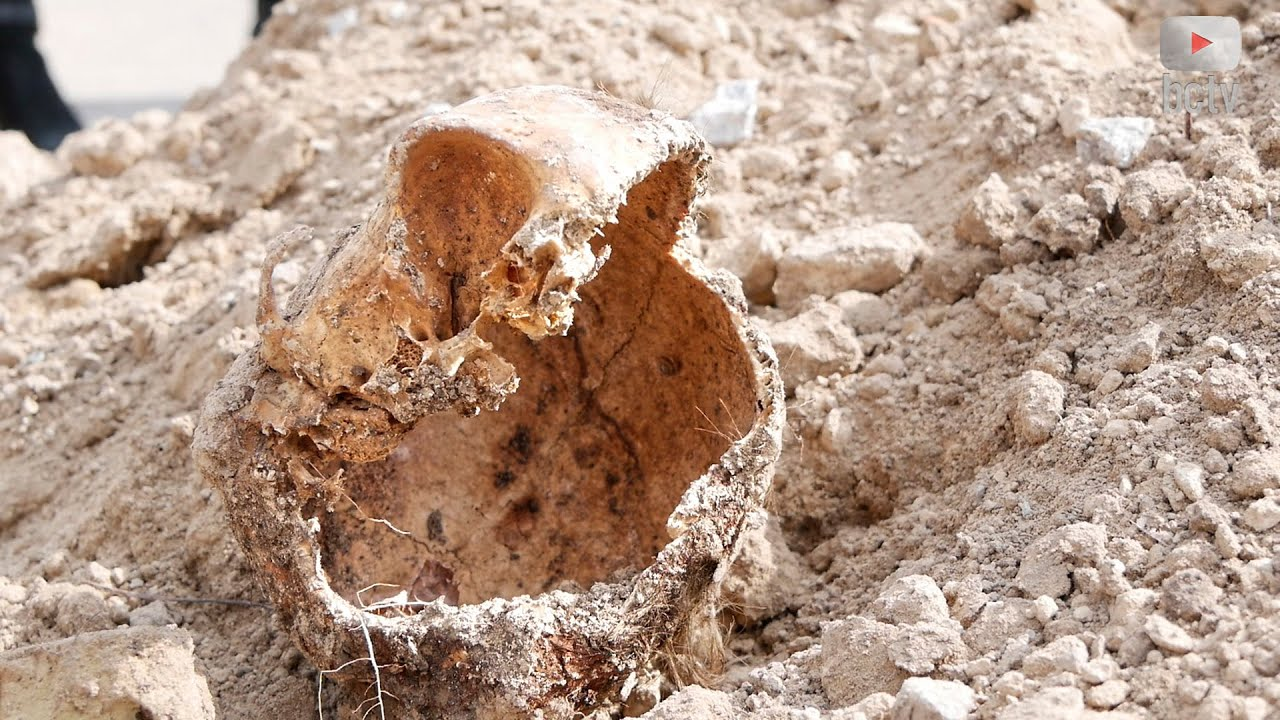 Людські рештки знайдено на Леваневського