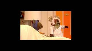 Bear Behaving Badly - Bird Brain Part 2 - HD 1080p