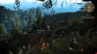 Ведьмак 3, Сердце Леса