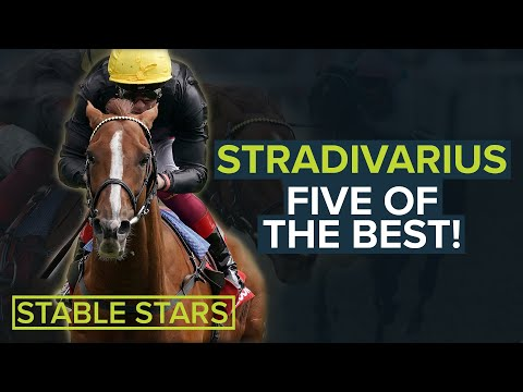 STRADIVARIUS: 5 OF THE BEST CUP WINS
