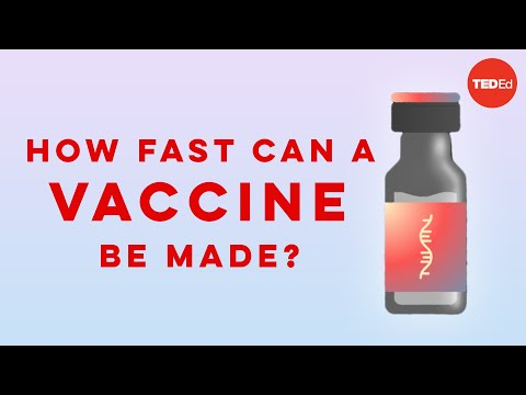Video image: How fast can a vaccine be made? - Dan Kwartler