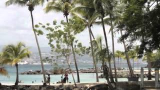 Мой фильм посвящен медовому месяцу Ирины Музафаровой на острове МАРТИНИКА