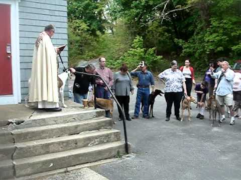 Greyhound Blessing N Dighton 5-2011.MPG