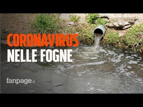 """Tracce di Coronavirus nelle fogne italiane, l'ISS: """"Indica presenza di un focolaio epidemico"""""""