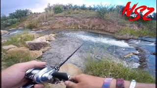 Desert Fishing Uber CLEAR WATER Creek (Never Stop Tour Pt. 4)