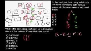 How to calculate inbreeding coefficient