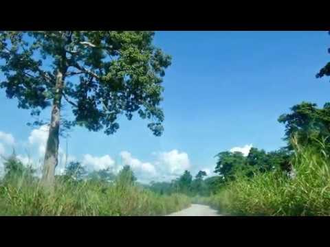 Cabinda - Road to Cabinda