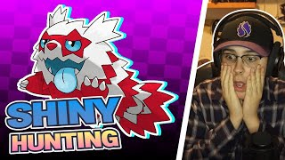IS TODAY THE DAY?! (SHINY ZIGZAGOON PART 5) (Pokemon Sword and Shield Shiny Hunting w/KingColpa)