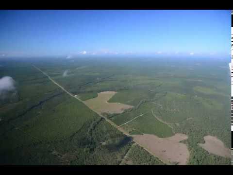 027SW down GA 23 towards Florida in upper left