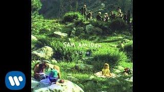 Sam Amidon - Walkin