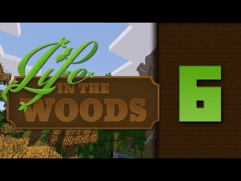 Life In The Woods - Minecraft - Ep. 06 : Camera cu cufere !