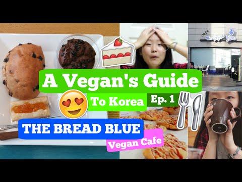 Vegan's Guide to Korea Ep.1: The Bread Blue Cafe || Soo Hyun