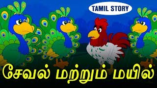 சேவல் மற்றும் மயில் - Bedtime Stories For Kids | Fairy Tales in Tamil | Tamil Stories | Koo Koo TV