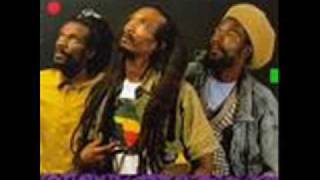 israel vibration ambush