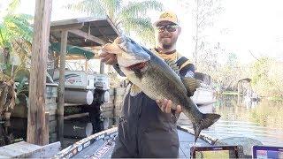 2019 Bassmaster Elite Series at St. Johns River